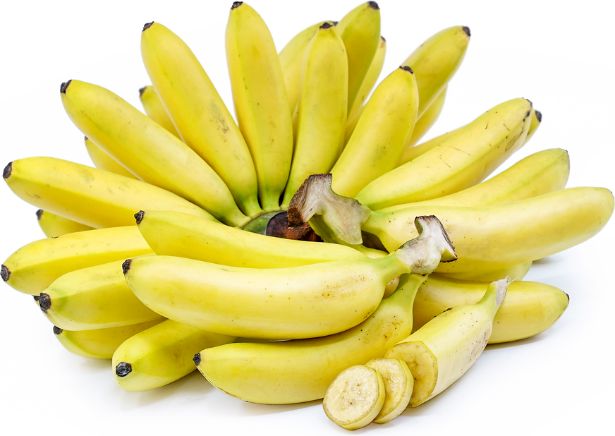 Baby Bananas Information, Recipes and Facts Bumpy Texture Fruit