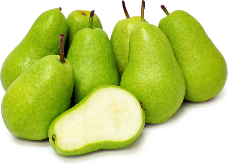 Tosca Pears