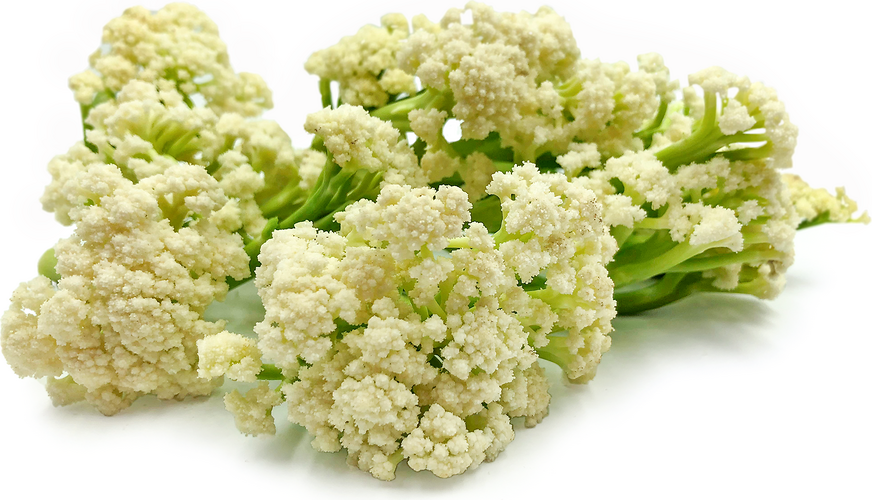 Karifurore Cauliflower