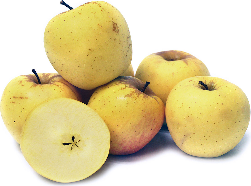 Philo Gold Apples picture