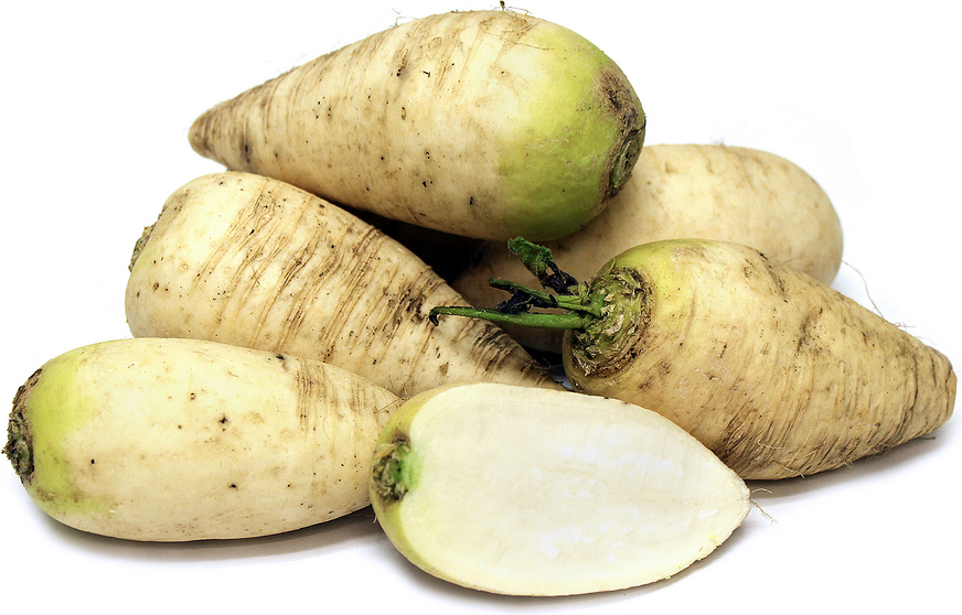 German Beer Radish picture
