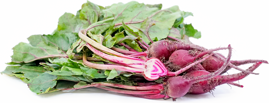 Chiogga Beets picture