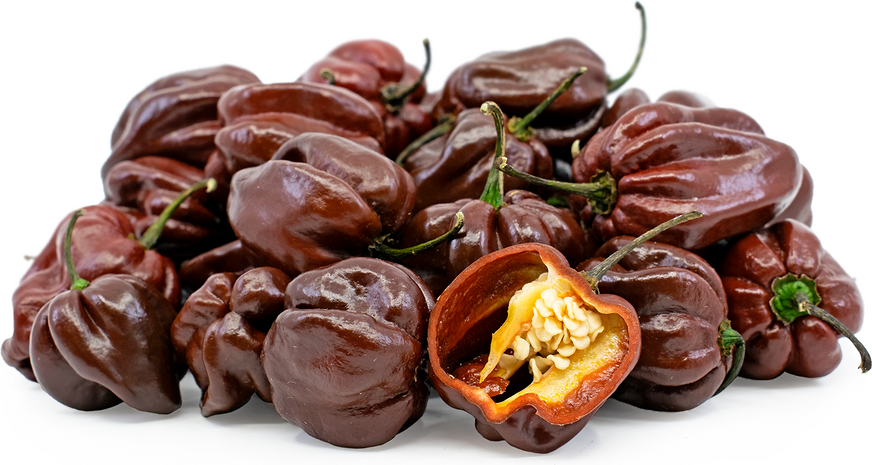 1047f153f148 Black Habanero Chile Peppers Information and Facts