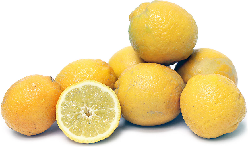 Perrine lemons information and facts - Unusual uses for lemons ...