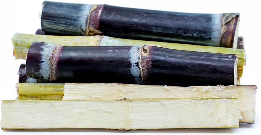 Purple Sugar Cane picture